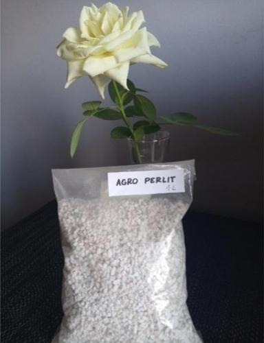 Agro perlit śląskie